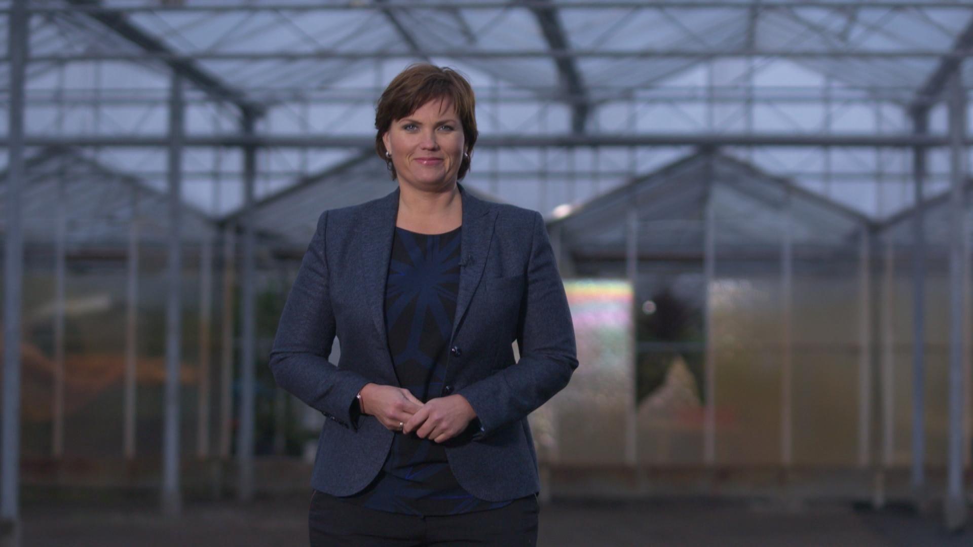 Brabant Nieuws jaaroverzicht 2016